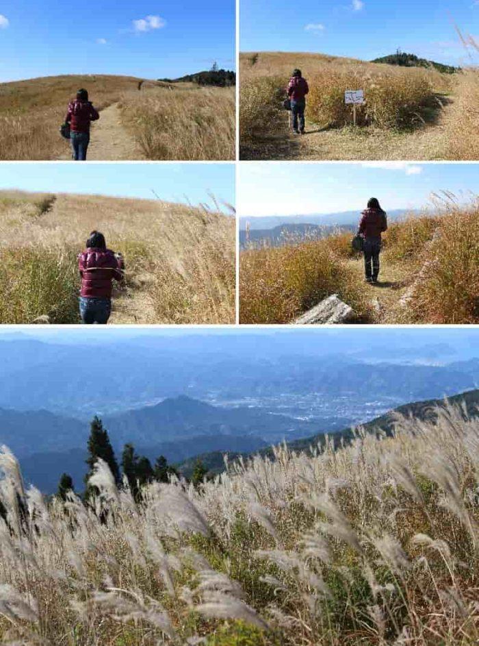 『西の丘』から眺める景色です。