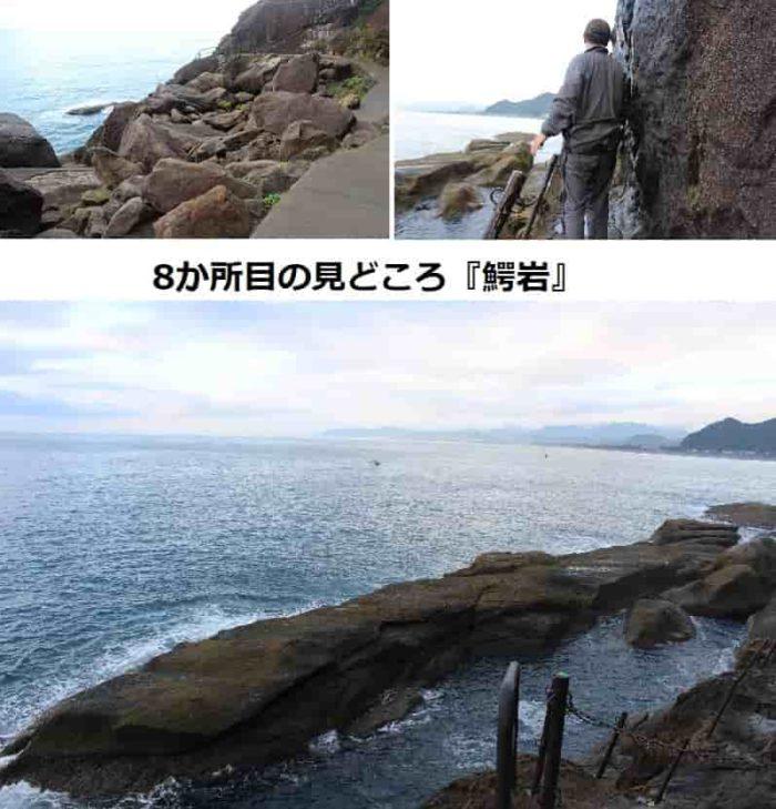 8か所目の見どころ『鰐岩』です。