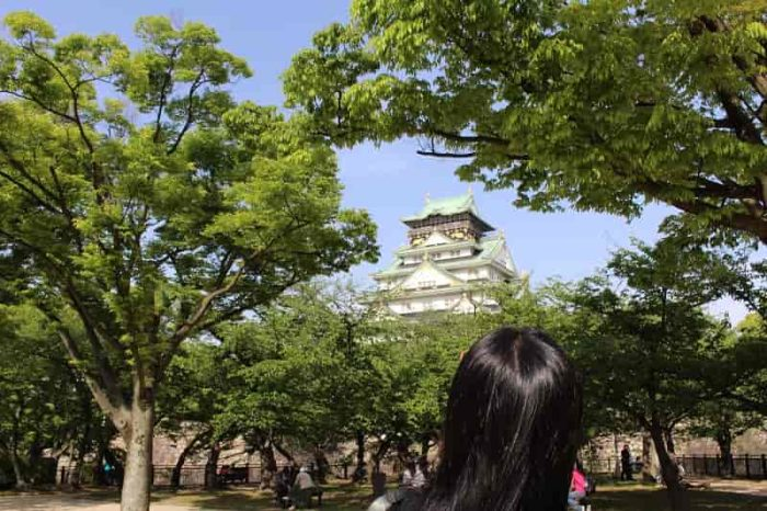 西の丸庭園から眺める大阪城です。