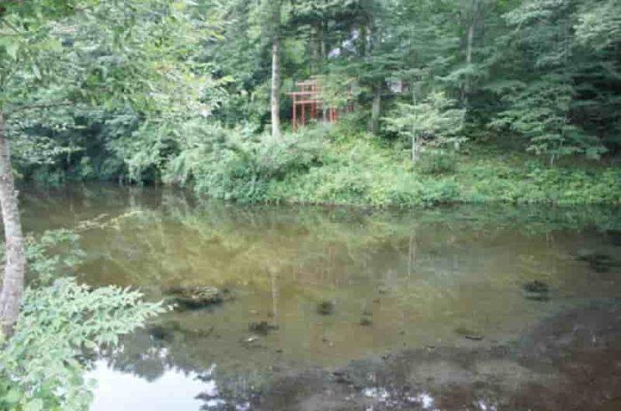 1番霊場となる『出口池』です。
