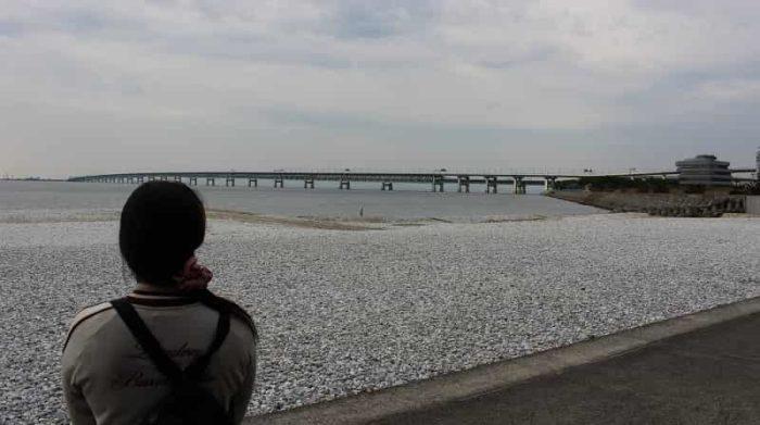 真っ白な玉石のロングビーチです。
