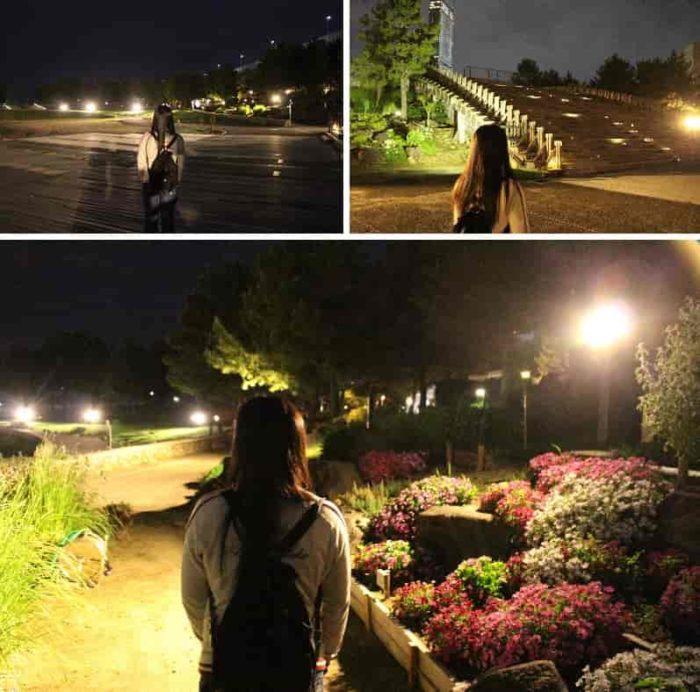 ライトアップの光を浴びた花街道です。