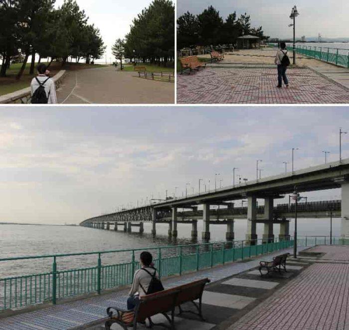 シーサイドウオークから望む大阪湾です。