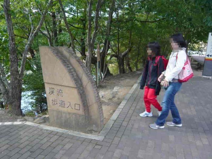 上流側の『渓流歩道入口』です。