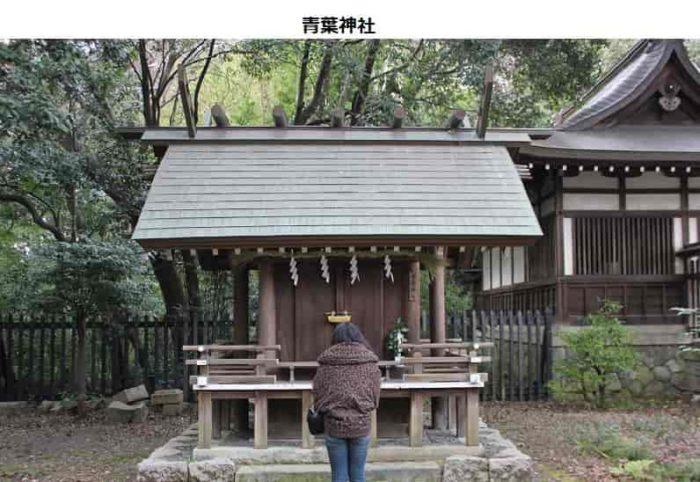 見落としがちな青葉神社です。