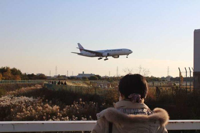 千里川河川敷で望む大迫力の飛行機です。
