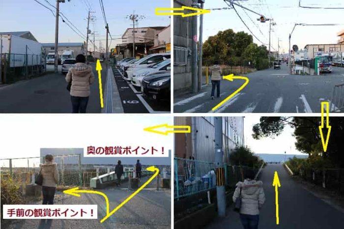 千里川河川敷の観賞ポイントへ向かいます。
