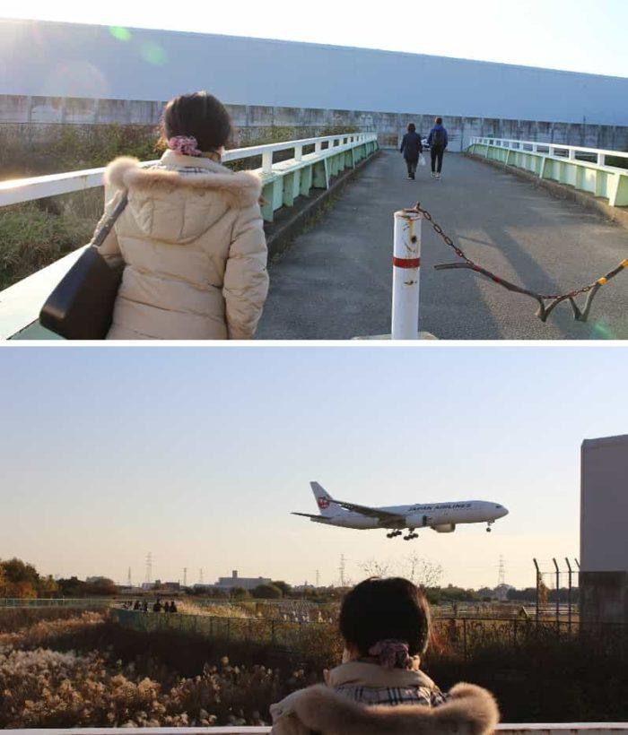 梨高橋より望む迫力満点の飛行機です。