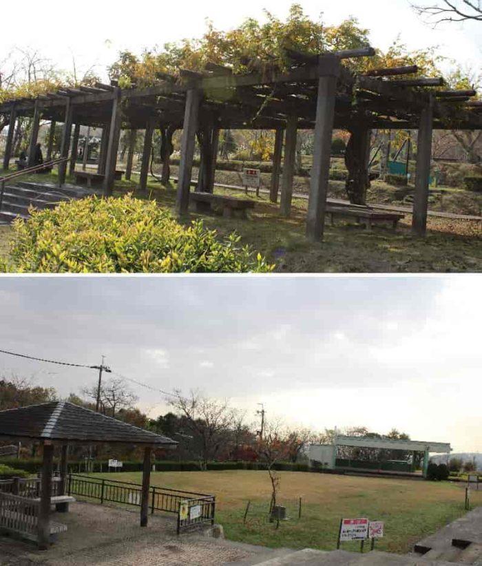 桜広場にある野外ステージです。