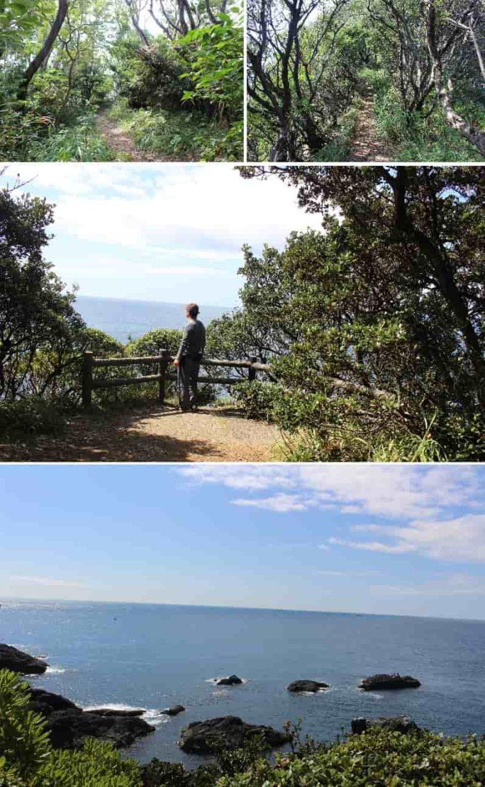 潮岬の鯨山見から眺める景色です。