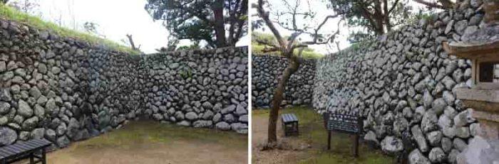 串本町指定文化財の御綱柏の木です。