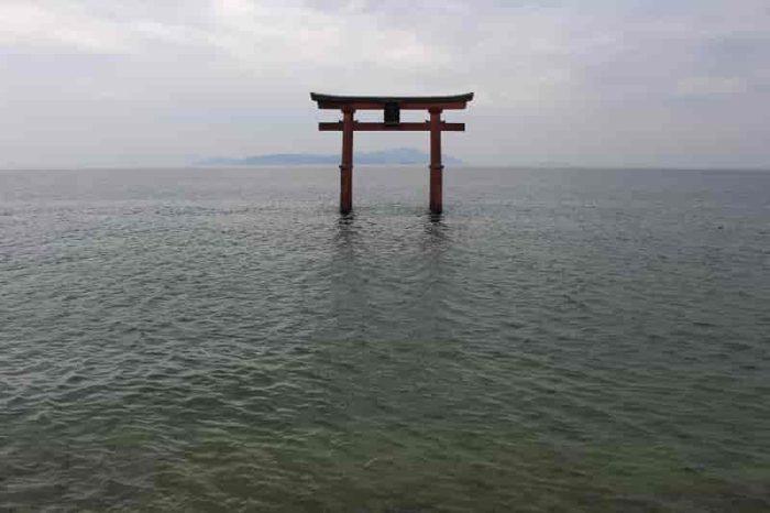 白鬚神社のシンボル『湖中大鳥居』です。