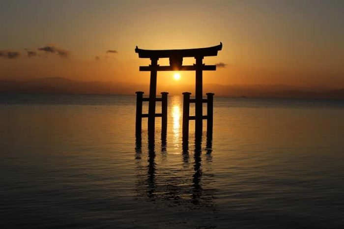 湖中の大鳥居の中に望む朝日です。