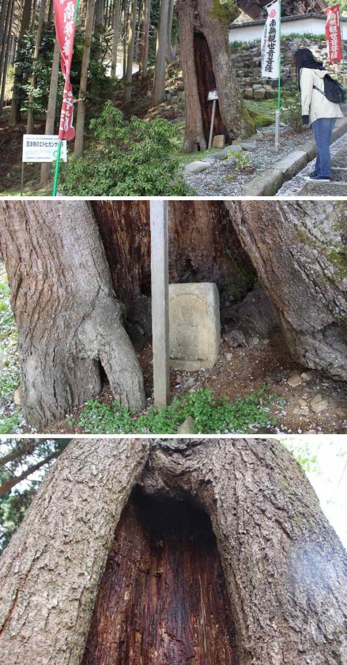 空洞化した祠に祀られた石碑です。