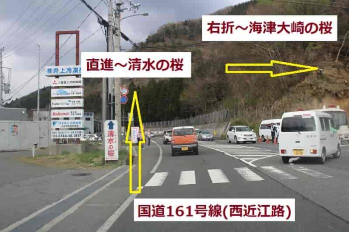 清水の桜周辺の交通状況です。