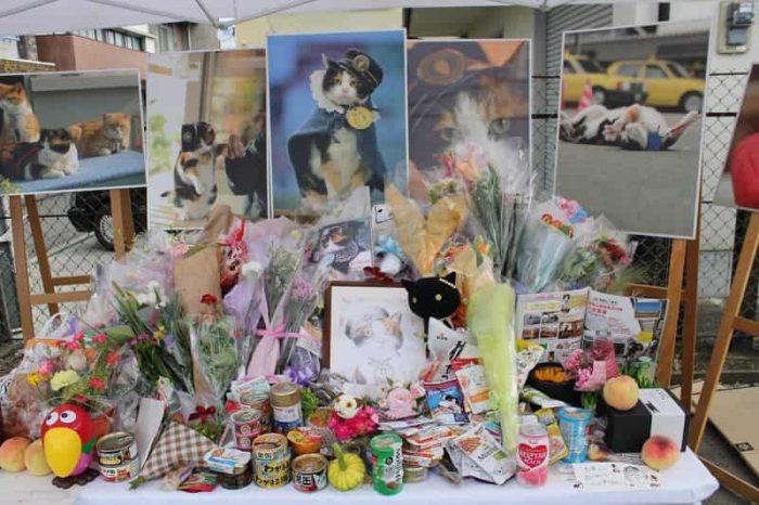 『ウルトラ駅長たま』のお葬式の祭壇です。