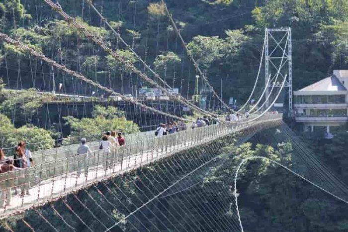 日本一が歌い文句の谷瀬の吊り橋です。