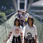 『谷瀬の吊り橋』です。