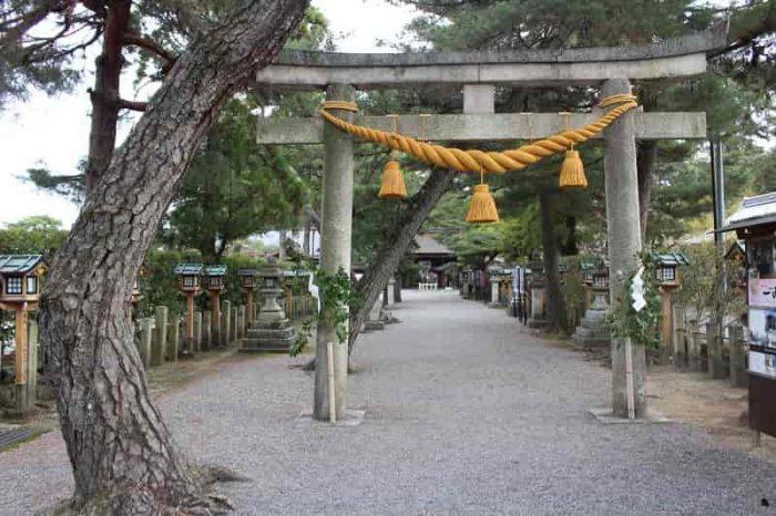 両脇に松の木を従えた参道です。