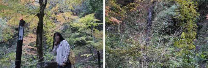 水量がかなり少ない『糸滝』です。