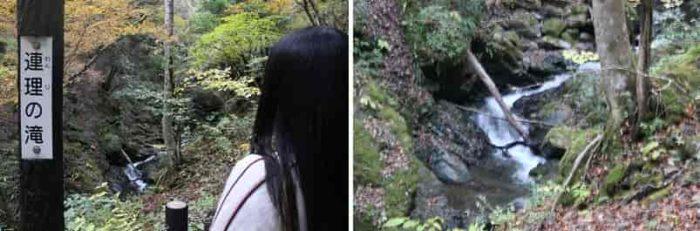 『連理の滝』は全貌は見えません。