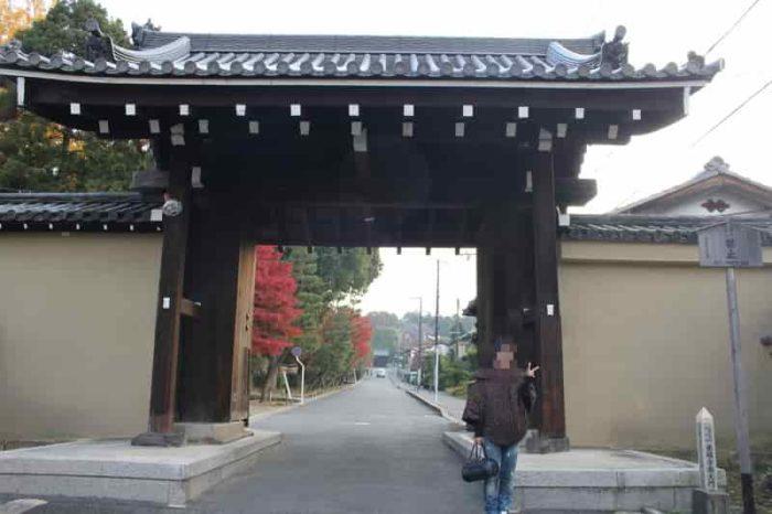 紅葉の名所で名高い東福寺です。