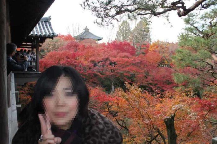 東福寺の境内の紅葉の景色です。