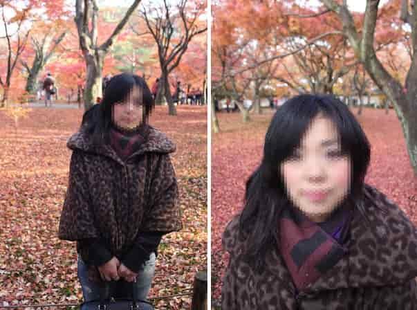 落葉した紅葉が真っ赤なじゅうたんに!
