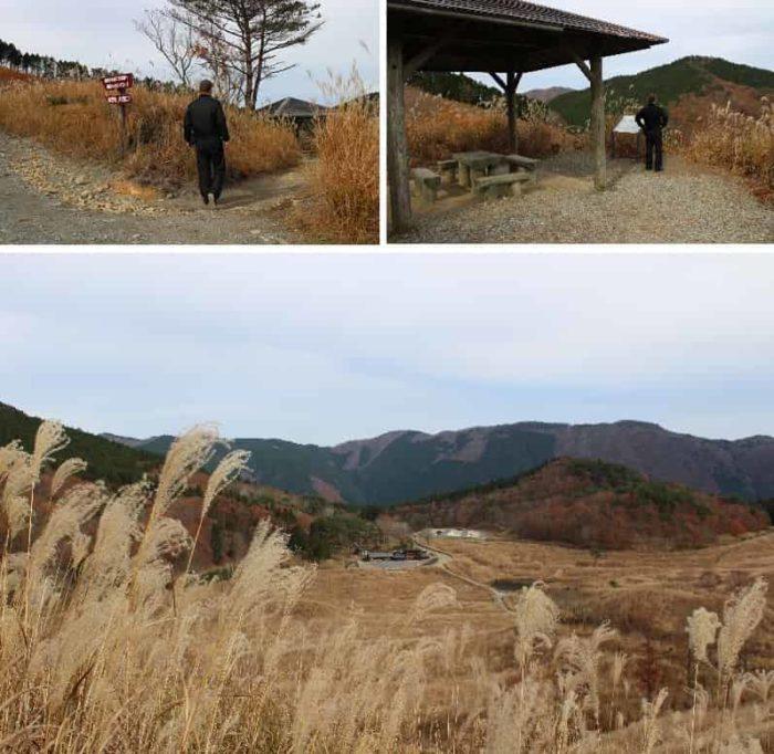 東屋から望むススキの大草原です。