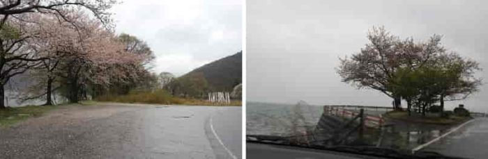 全長18.8kmの奥琵琶湖パークウェイです。