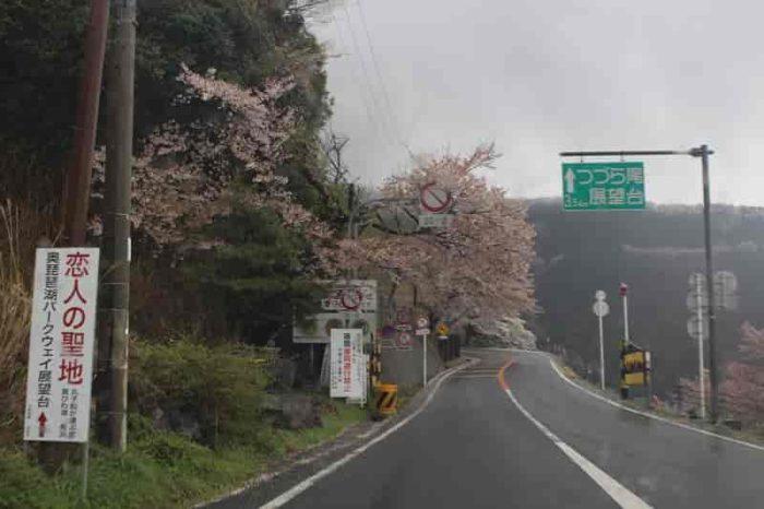 つづら尾崎展望台までは3.5kmの上りです。