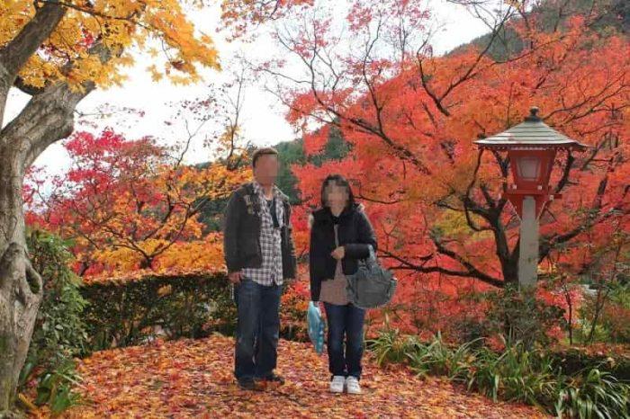 紅葉のじゅうたんの撮影ポイントです。