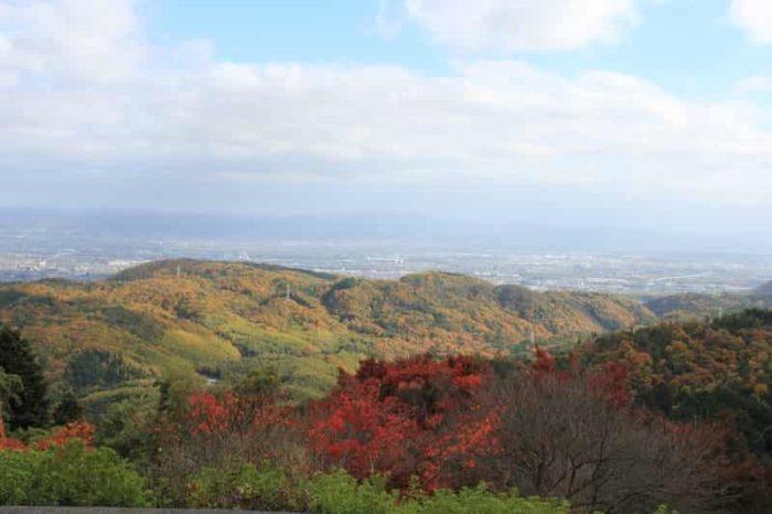 京都市内を一望できます。